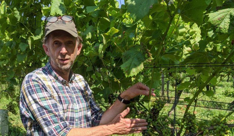 Go Dutch Wine_Aan de BreedeBeek_Henk van Breugem 2