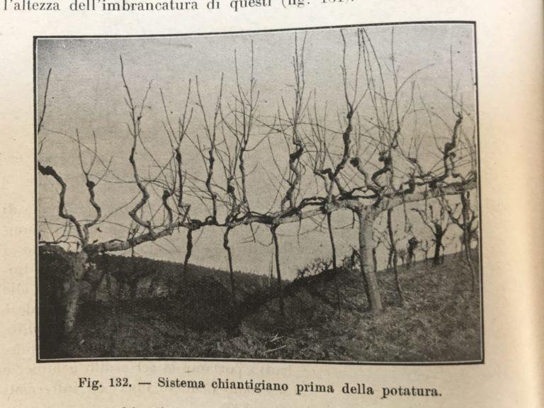 """Het """"Chianti systeem"""" zoals dat in de loop van eeuwen in Toscane is ontwikkeld en tot in de 19e eeuw werd toegepast."""