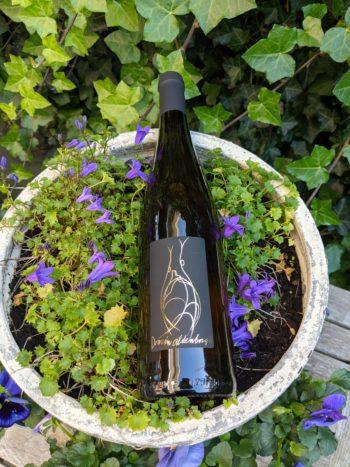 GoDutch.Wine   Domein Aldenborgh Pinot Gris 2013