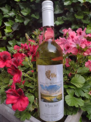oDutch! wine Montferland Iessel Wit